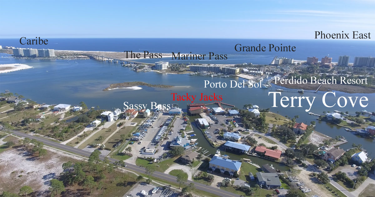 Terry Cove aerial image with condos and places labeled