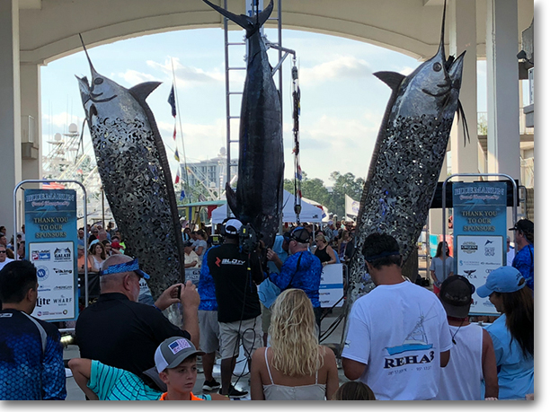 Blue-Marlin-Grand-Tournament
